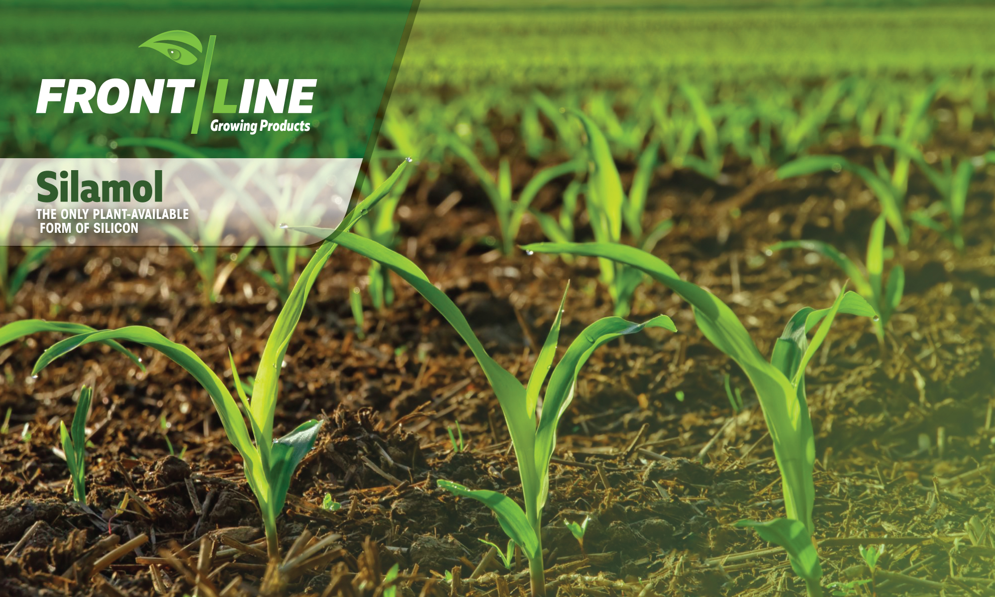 Frontline Growing Products Inc.